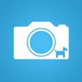 Fotógrafos de Pets